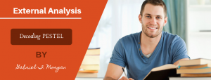Learn how to do External Analysis of a company (with examples)