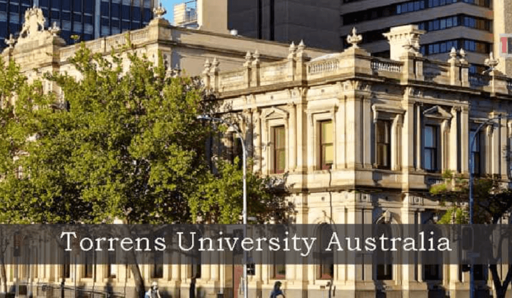 Torrens University assignment help